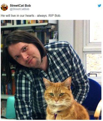 ボーエン氏と猫のボブ