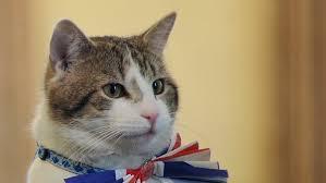 英外務省ネズミ駆除任務「ラリー」