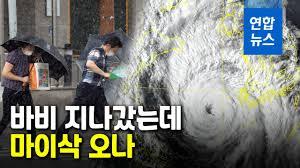 台風8号被害状況