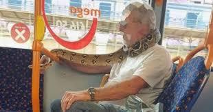 マスクの代わりに本物のヘビを首周りに巻き付ける姿