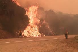 米西部の山火事