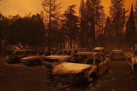 米西部の山火事焼け跡