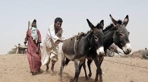 スーダンの農業従事者