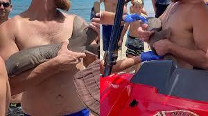サメに噛まれた様子を動画で撮影