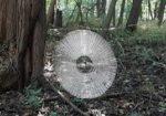 巨大なクモの巣