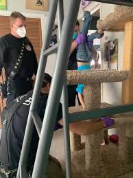 キャットタワーの穴に頭がはまり抜け出せない4歳息子