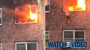 火災発生で窓際に取り残された猫、決死のジャンプ。
