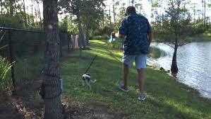 犬を連れて自宅裏庭を散歩