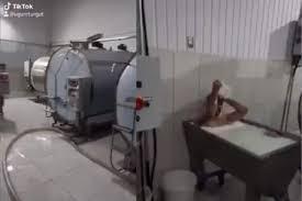 """乳製品工場で""""牛乳風呂""""に浸かる男"""
