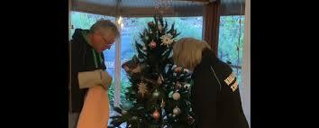 クリスマスツリーに登り寛ぐ本物コアラ