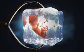 27年前の凍結胚から女児誕生