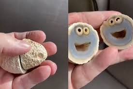 クッキーモンスター柄の鉱物