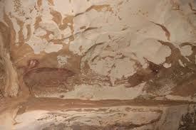 「世界最古」4万5500年前のイノシシ壁画