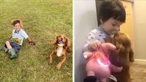 自閉症児の人生を変えた1匹の犬ファーンとレオン君