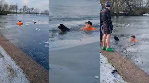 凍った湖に飛び込んで溺れる犬を助けたダーシー・ぺル