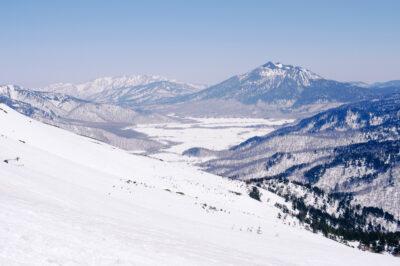 記録的な寒波に襲われた自然