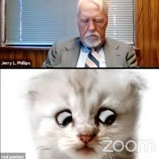 敏腕弁護士Zoomでの裁判に子猫姿で登場