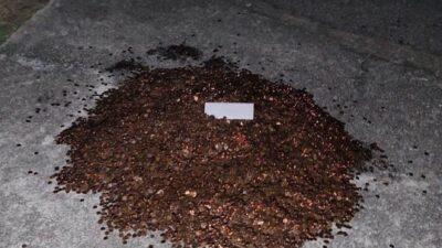 未払いの給料10万円を油まみれの硬貨で支払う。