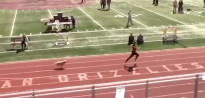 800mリレーに犬が乱入 次々と選手を追い抜き1位でゴール
