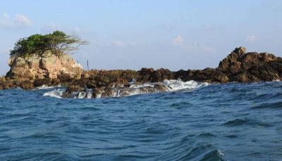 スネーク島- 地球上で最も致命的な場所