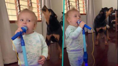 2歳の女の子(Gia)と愛犬(Zara)の可愛すぎるデュエット!