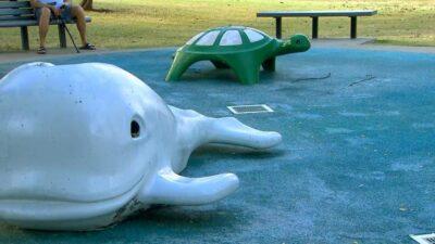 公園の水遊び場で男児が「脳を食うアメーバ」に感染し死亡(米)